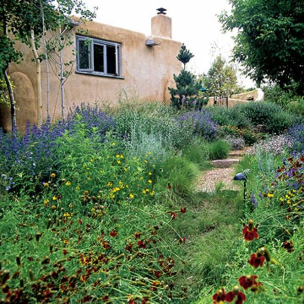 Garten Landschaft Xeriscaping frontal