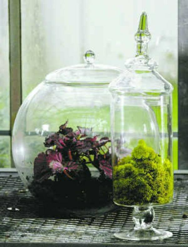 Glasbehälte Broccholi Gruen