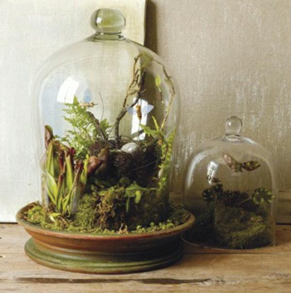 Glasbehälter für Dekoration Wald