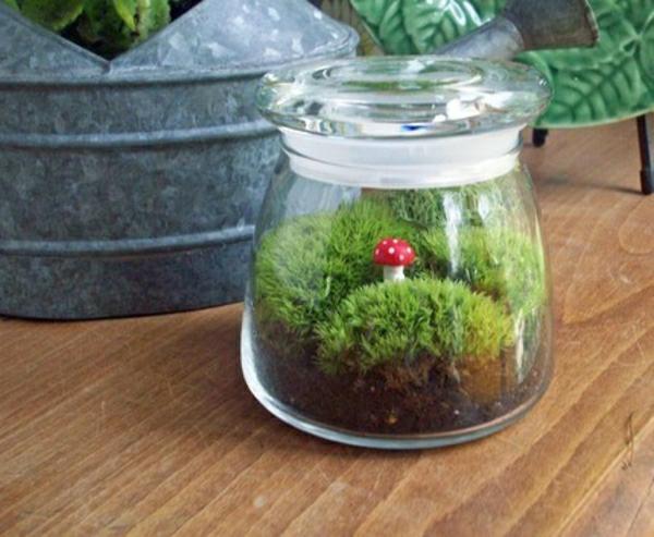 Glasbehälter Pilz