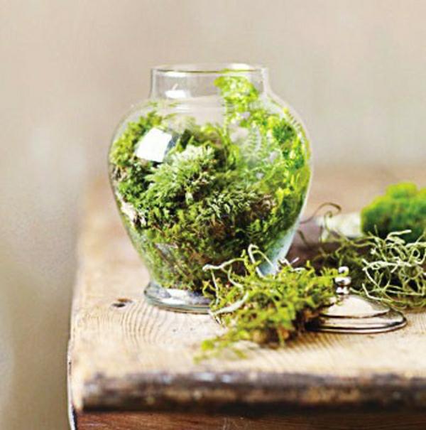 Glasbehälter sehr Grün
