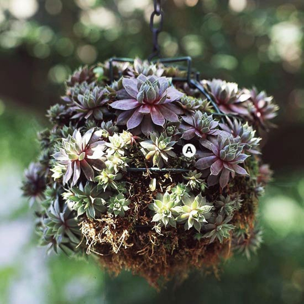 Gartengestaltung hängende Körbe