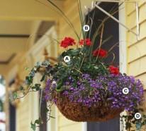 Gartengestaltung: Erschaffen Sie atemberaubende, hängende Körbe im Garten
