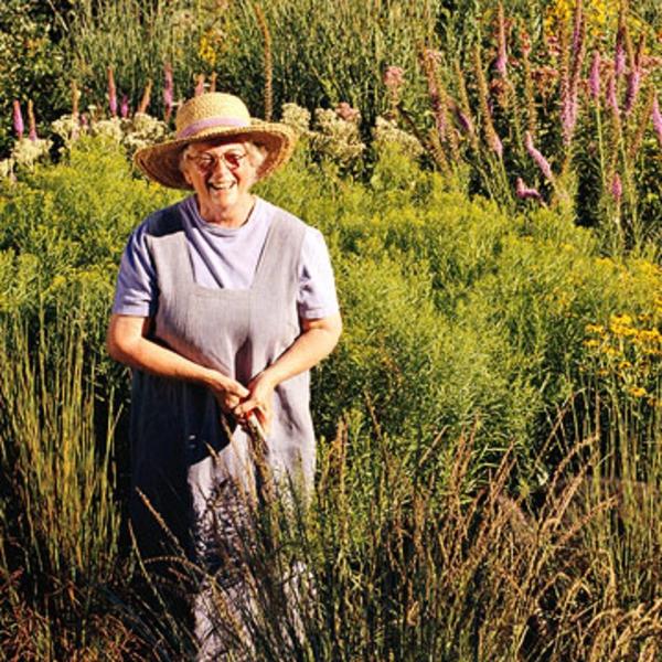 Garten Landschaft Xeriscaping Bauerin