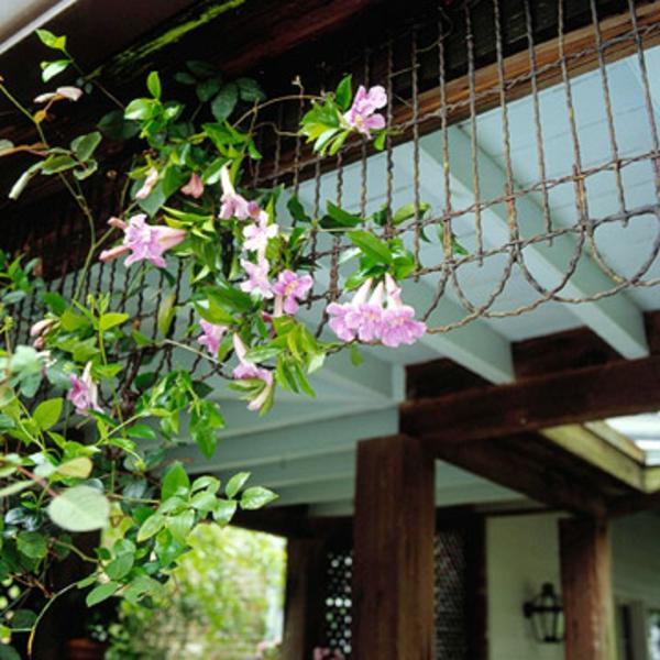 veranda garten idee deko kletterpflantzen