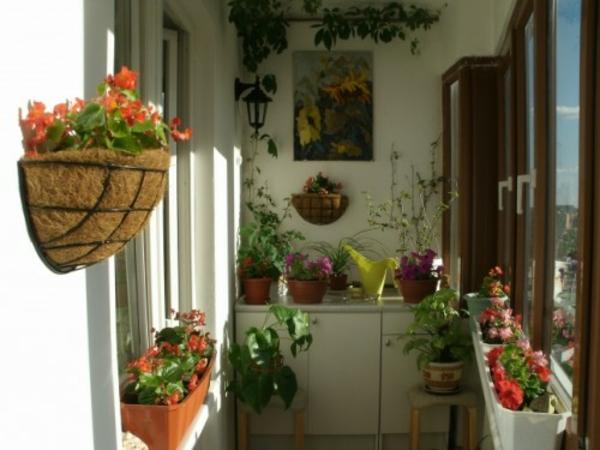 kleinen-Balkon-pflanzlich
