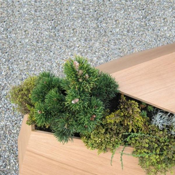 nadelpflanzen design holz blumenkübel ideen