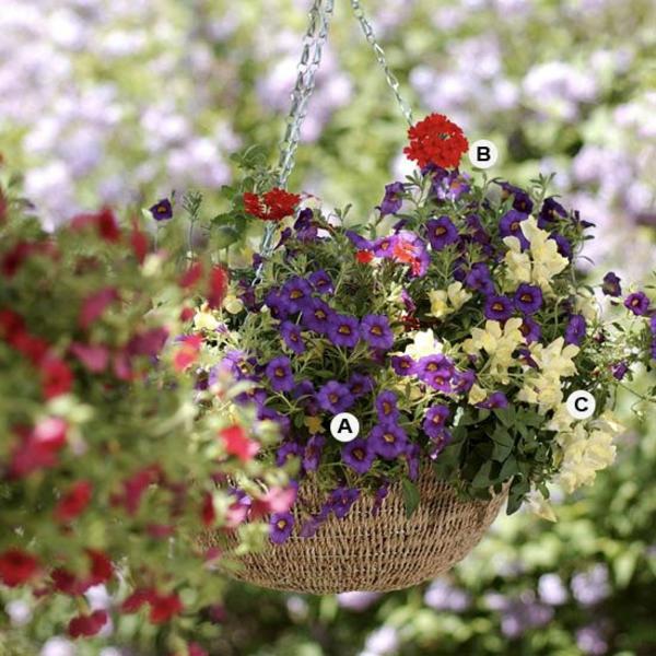 Gartengestaltung Mischung von Blüten
