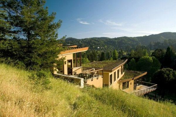 Exterieur Ideen - 20 stilvolle Designer Gebäude mit grünen Wänden