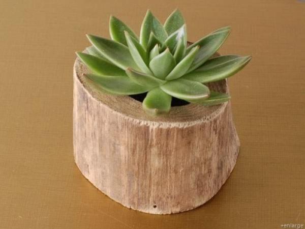 stilvoll deko idee baumstumpf vase selber basteln