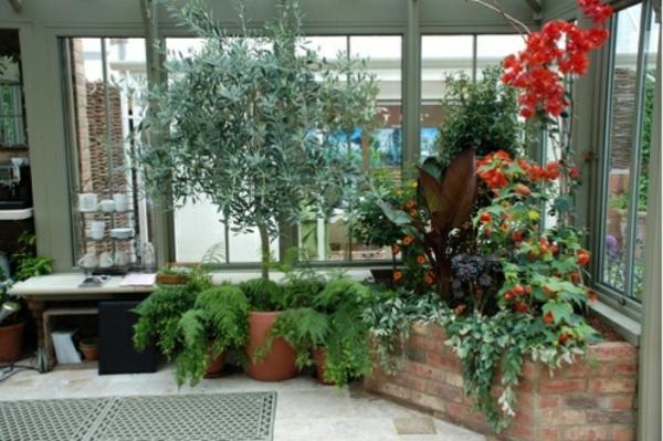 20 wintergarten design ideen - vielfalt von exotischen pflanzen, Terrassen ideen