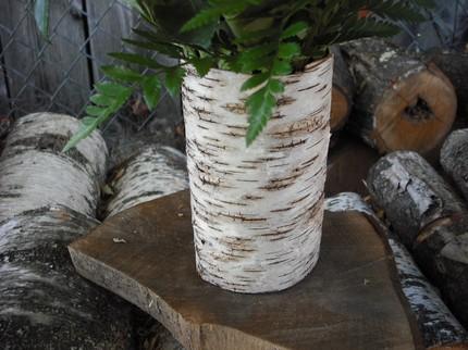 Baumrind Vase Baumtöpf Blumentöpf fantastische Garten