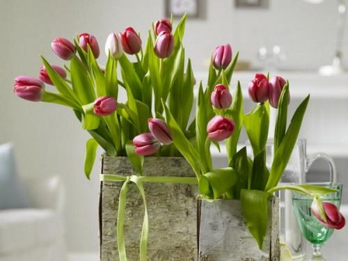 Blumentöpfe Baumrinde Design Tisch Esszimmer Wohnzimmer