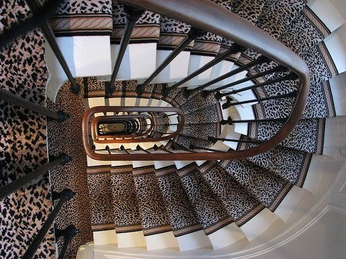 Geparden Muster Treppen Vorleger Dekor Zuhause