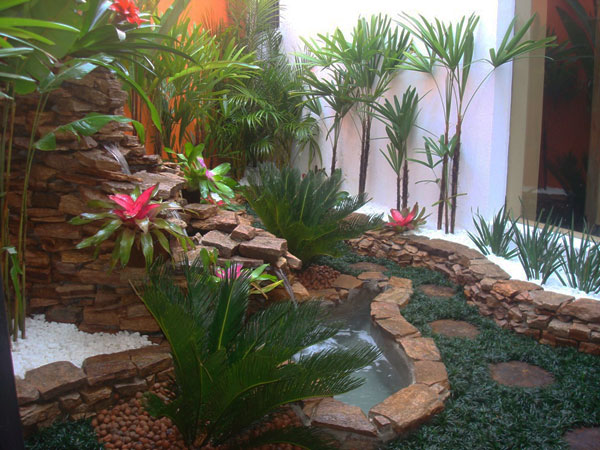 exotisch pflanzen arten blumen bunt garten ideen