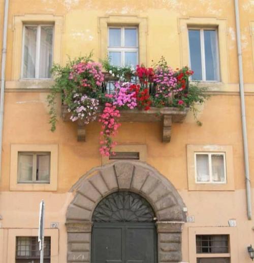farbenfroh blumen balkon schönheit rot rosa einen gemütlichen Balkon