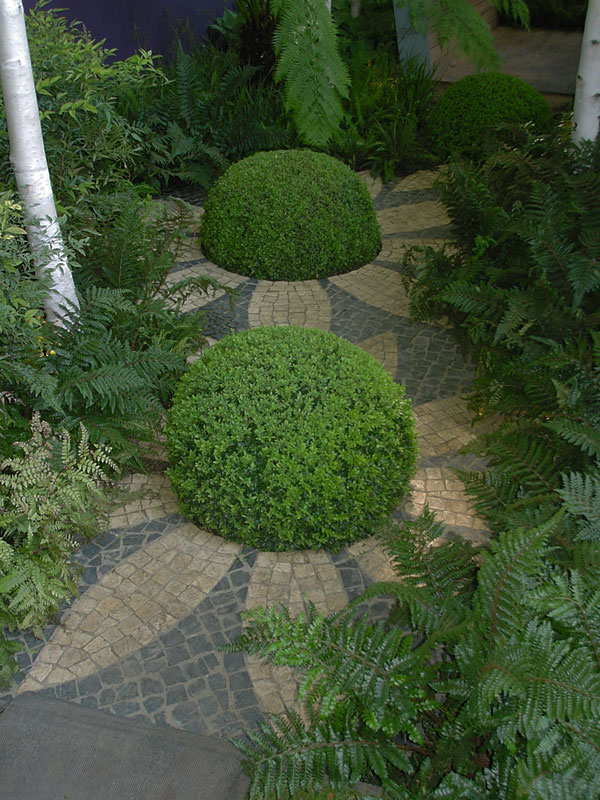 garten ideen  design busch idee landschaft