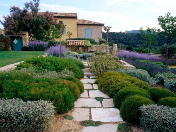 gartenbau mediterrane pflanzen steinplatten lavendel kräuter