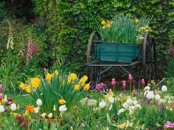 gartenideen frühlingsblumen tulpen narzissen schubkarren upcycling