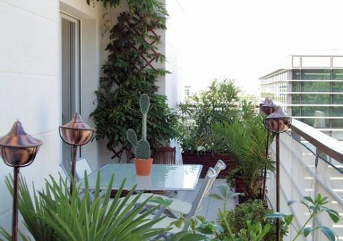 modern balkon gemütlich exotisch pflanzen glastisch kakteen blumentöpfe