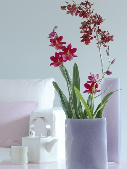 dekoration mit orchideen 14 exklusive erfrischende ideen. Black Bedroom Furniture Sets. Home Design Ideas