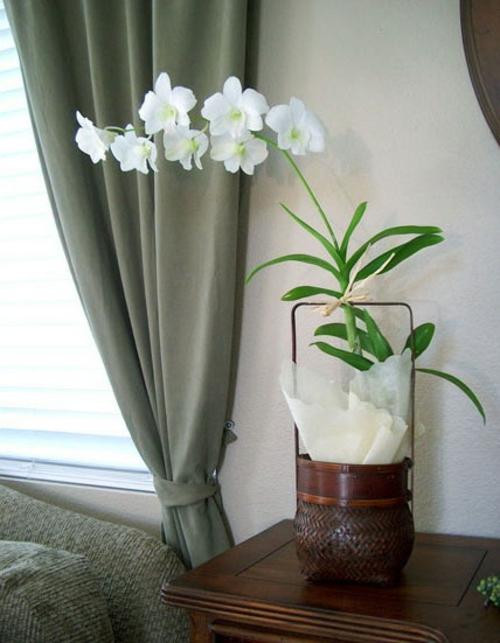 Dekoration mit orchideen 14 exklusive erfrischende ideen - Orchideen deko ...