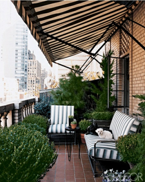sonnenschutz lehnstuhl sitzbank streifen hunde balkon
