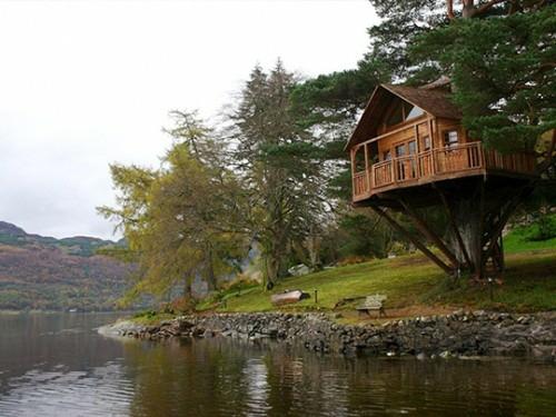 Traumhafte Baumhäuser Grün An Der Küste See Märchenhaft Photo Gallery