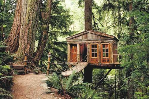 Traumhafte Baumhäuser Grün Wald Brücke Holz Originell
