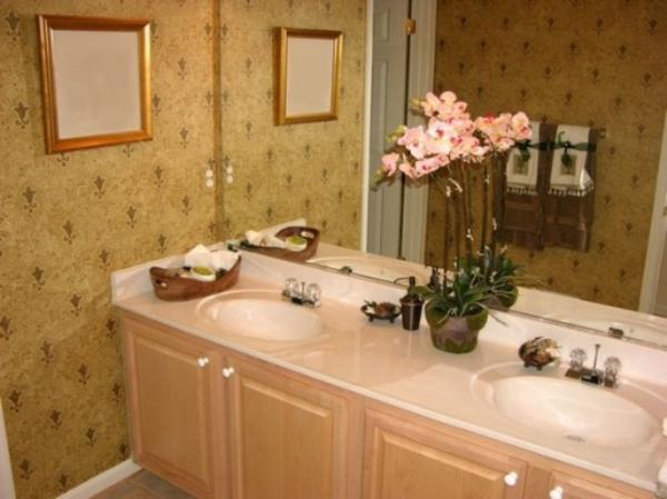 Badezimmer Schrank Orchidee Cremig Farbe