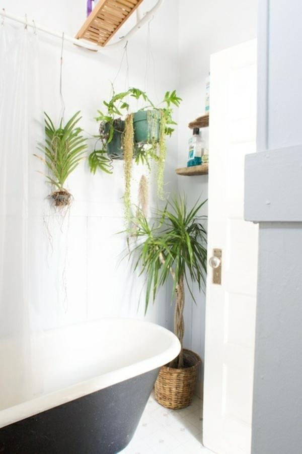 Badezimmer design mit blumen und pflanzen originelle for Badezimmer pflanzen