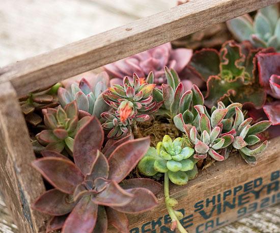 Lustige Blumenkasten Ideen Aus Alten Unbrauchbaren Materialien
