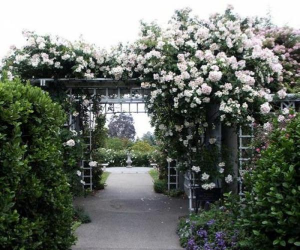 blumenbogen deko weiß rosen