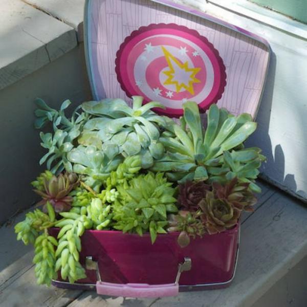 deko ideen für den garten fettprlanzen koffer
