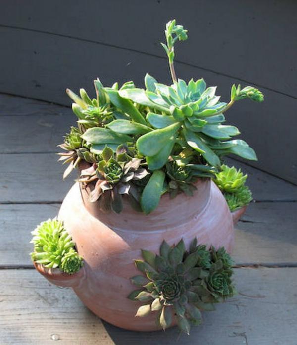 deko ideen für den garten- ettprlanzen