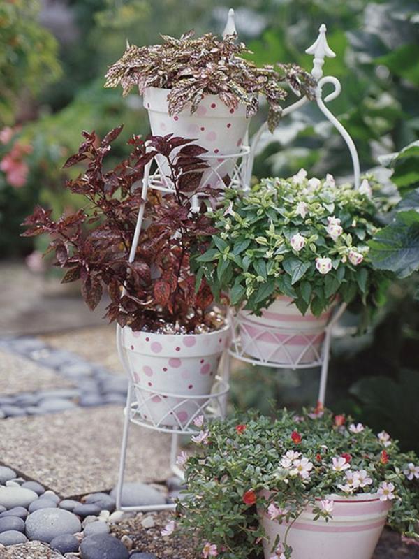 dekoration außenbereich pflanzen