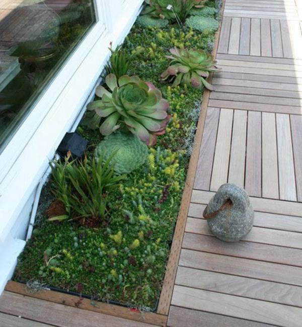 Deko Ideen für den Garten mit Sukkulenten - frisch und belebend