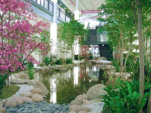 interieur design pflanzen teich
