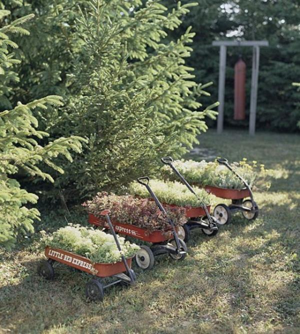 kleine wagen grüne pflanzen