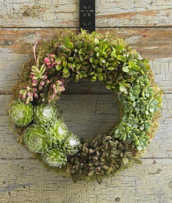 35 wundervolle deko ideen für den garten mit sukkulenten, Garten und bauen