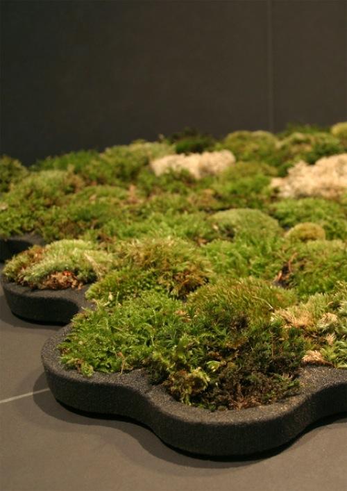 lebende badematte grün originell design moosteppich