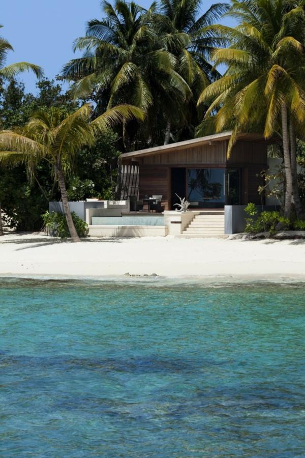 malediven ferienhaus palmen pflanzen