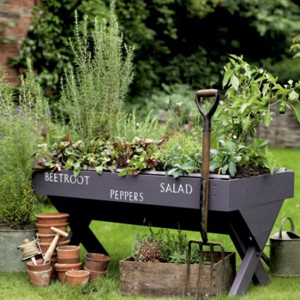 originell verzierung außenbereichpflanzen