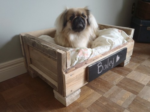 Deko Ideen Aus Altholz : DIY Pallet Dog Bed