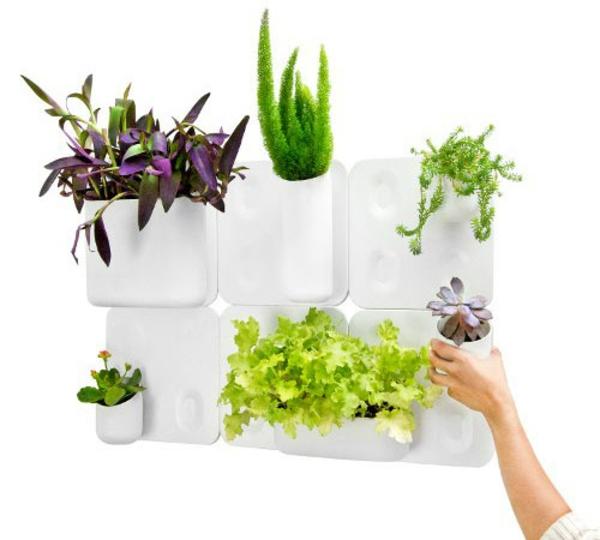Schickes Ordnungssystem Zu Hause An Der Wand Befestigt Blumen Behaltern Zu Hause