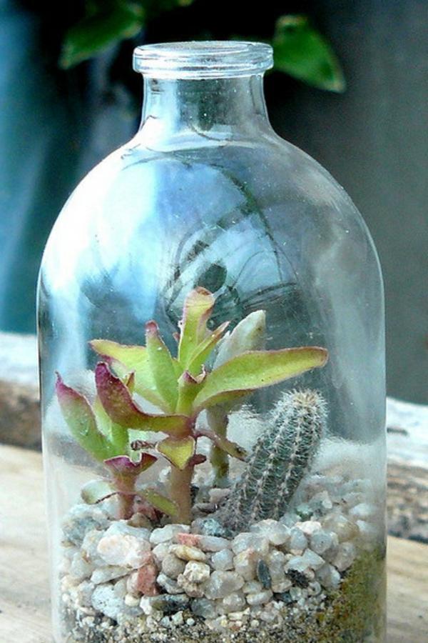 steingewächs dekoration groß flasche