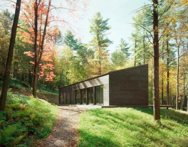 stilvolles haus design 16 türen new york wald bäume
