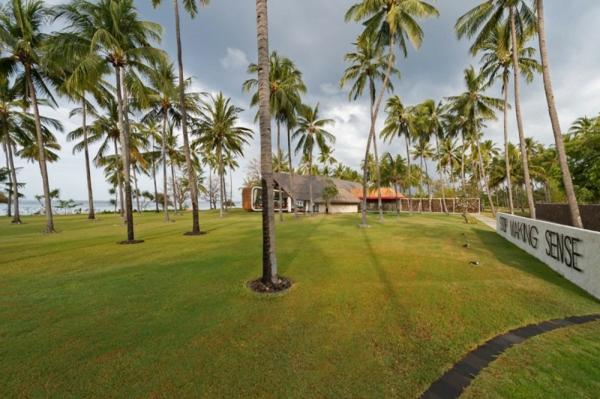 villa sapi garten kokospalmen
