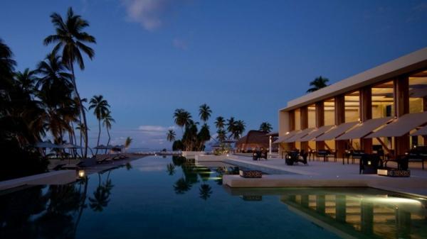 wunderschön swimmingpool palmen