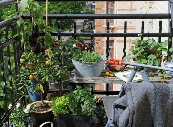 Coole ideen f r balkon pflanzen einen garten auf balkon for Garten balkon
